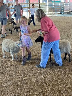 Sheep 8.jpg