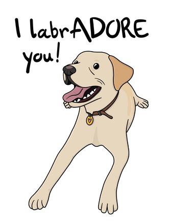 Labradorard.png