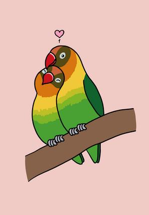 Love Bird Card
