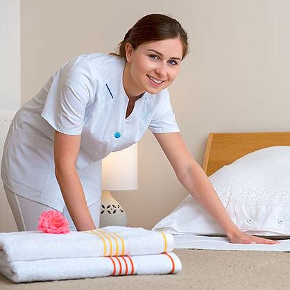 maid service newcastle