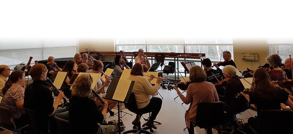 OrchestraPhoto_edited.jpg