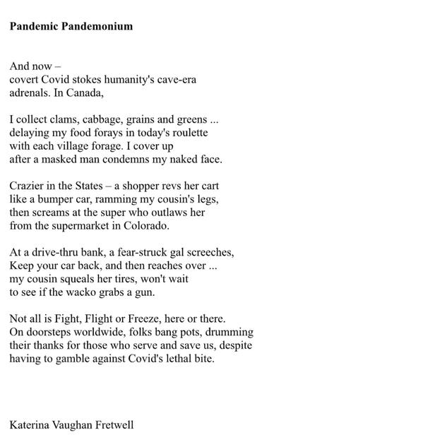 Pandemic Pandemonium by Katerina Vaughan Fretwell