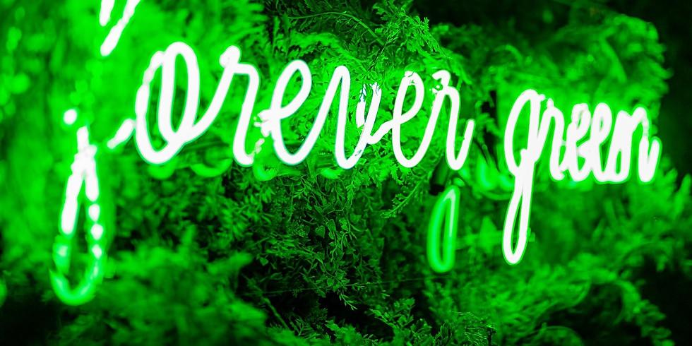 Forever Green 46