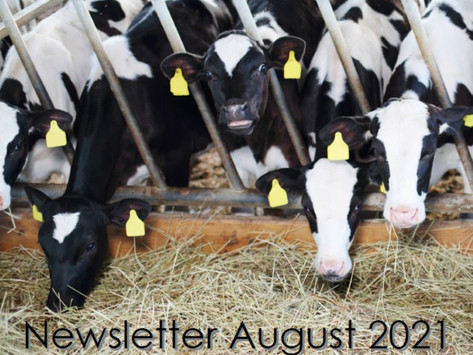 The Penbode Farm Vets August 2021 Newsletter is out now!