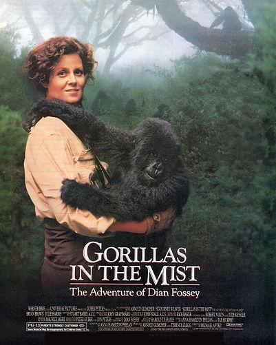 GorillasInTheMist.jpg