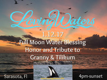 Sarasota, FL ~ 1/12/17 Full Moon Water Blessing  and Tribute to Orcas Granny & Tilikum