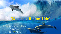 """We are a Rising Tide"""
