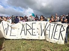 We_are_water_590.jpg