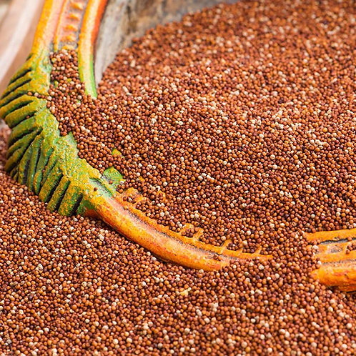 Thinai/Foxtail Millet