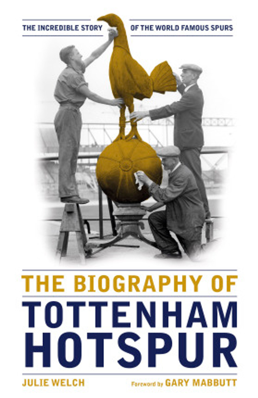 Cover of Spurs biography