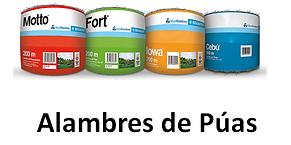 ALAMBRES DE PUAS.png