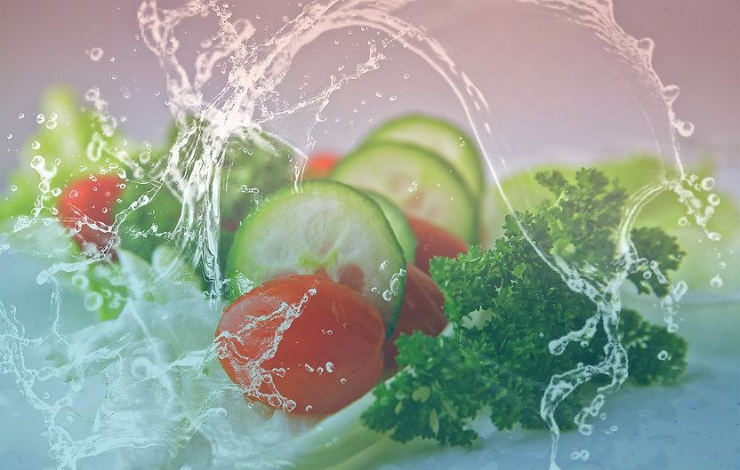 salad pixabay for website logo color.jpg