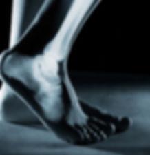 Skelton-x-ray-foot.jpg