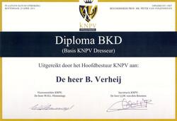 BKD-cursus