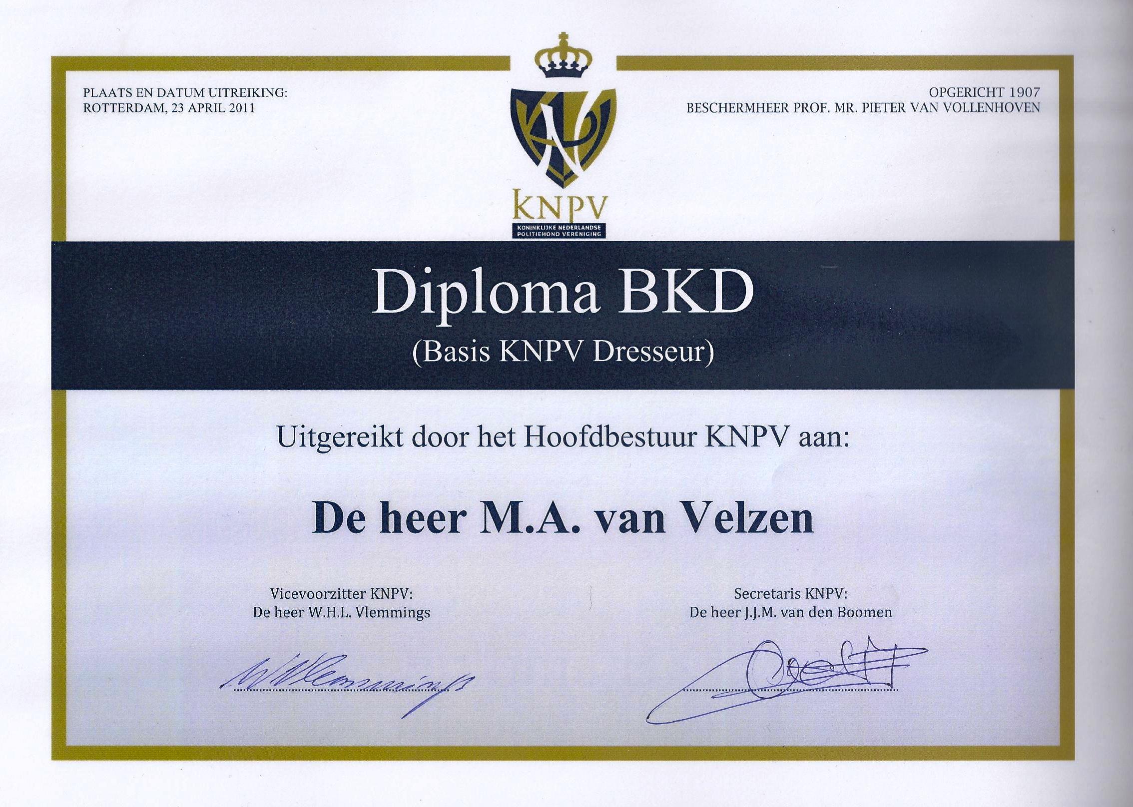 BKD diploma