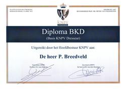 BKD Pieter