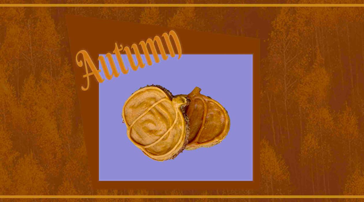 Autumn Furry Kids Kitchen Pumpkin web banner.jpg