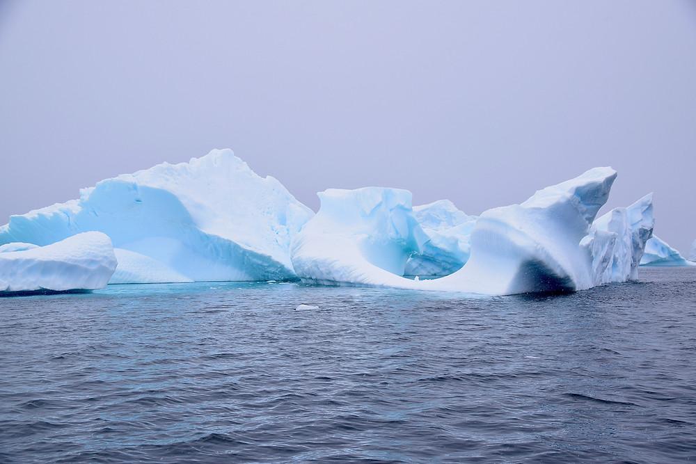 Iceberg Graveyard