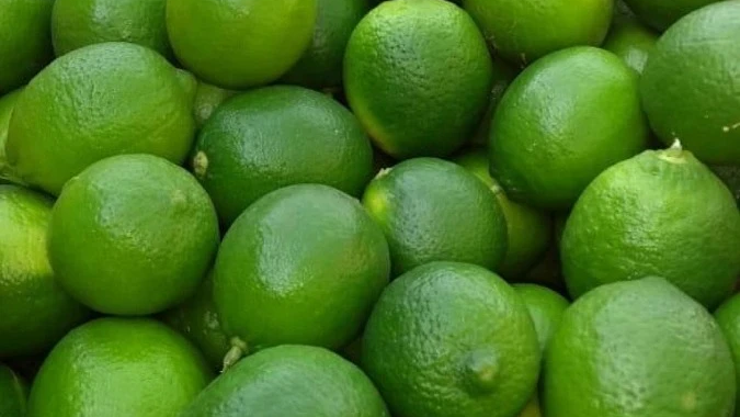 Limón Mexicano, Calidad 1ra.