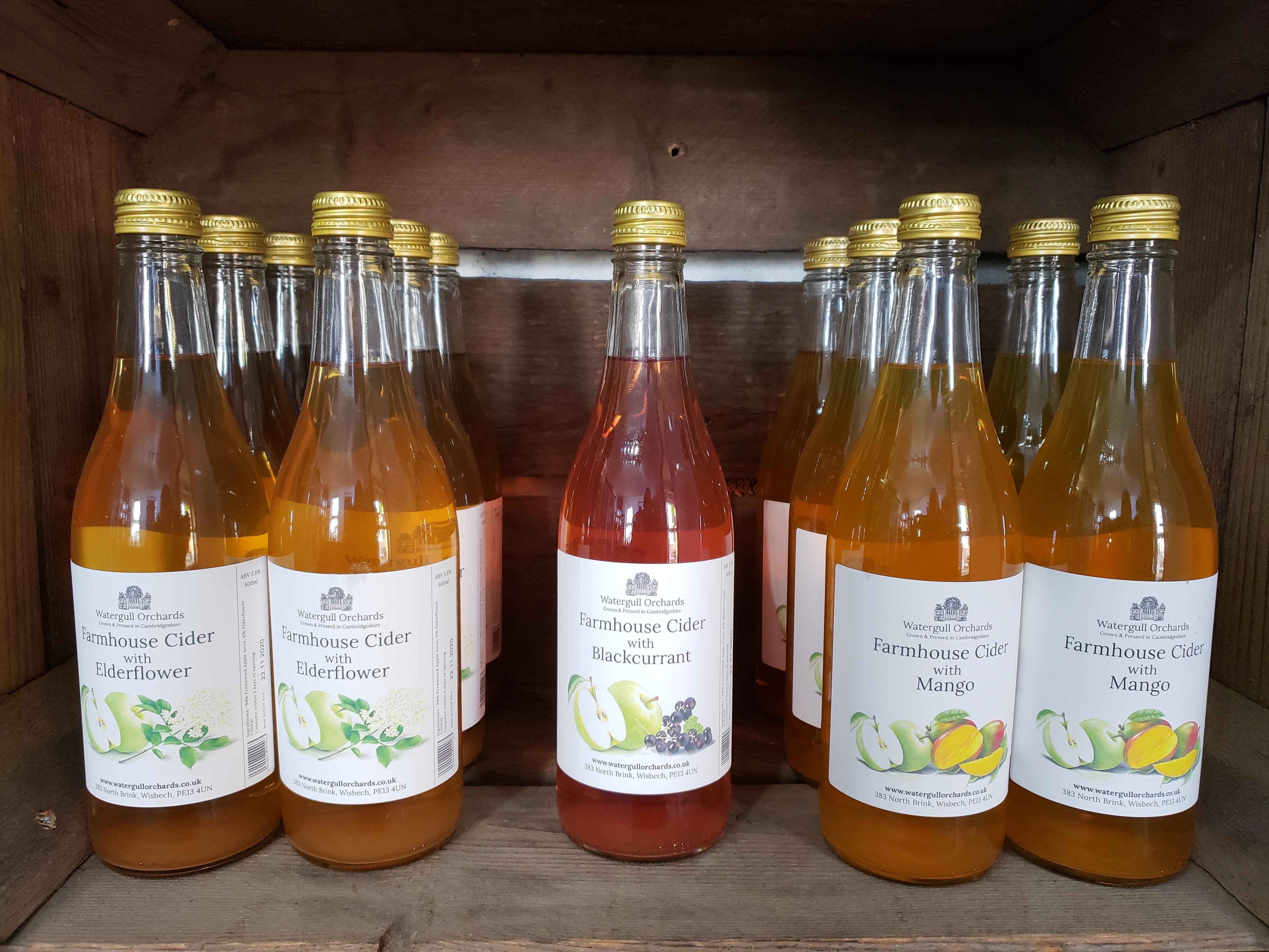 Watergull Cider