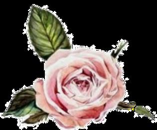 pink%2520flower_edited_edited.png