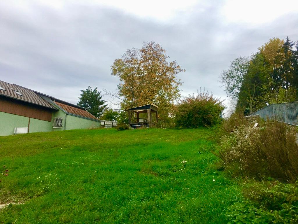 Terrain de 7,31 ares lot 1 libre de constructeur exposition plein sud 68730 Ranspach-le-Bas