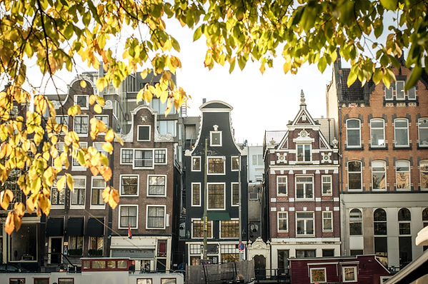 Non-Stop to Amsterdam
