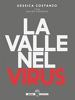 26 - VALLE NEL VIRUS.JPG