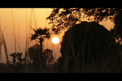 Mali burkina-67