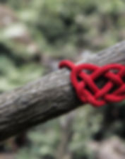 celtic knot_edited.jpg