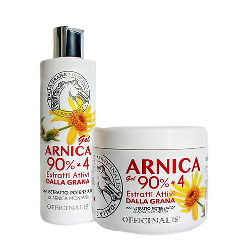 GRUPPO%20ARNICA)1_edited.png