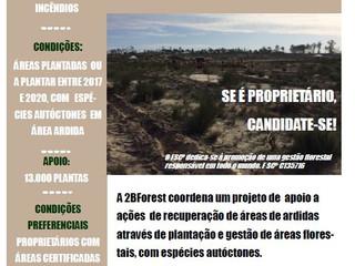 Projecto de Responsabilidade Ambiental alargado a ações de recuperação de áreas de ardidas do incênd