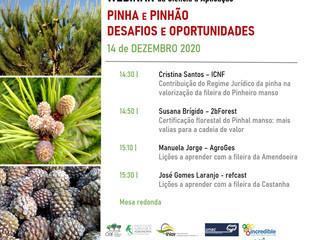 14/12/2020: 2BForest Participa no Webinar: Pinha e Pinhão: Desafios e Oportunidades