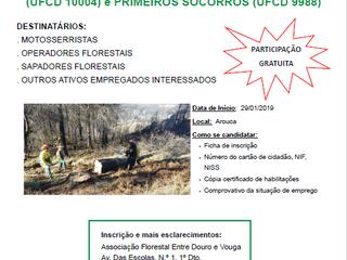 29/01/2020, Arouca: Formação - Motosserras e Primeiros Socorros, uma parceria 2BForest/ AFEDV