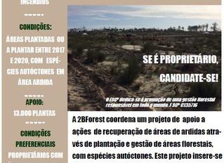 Projecto de Responsabilidade Ambiental já apoiou a gestão de mais de 27 mil plantas