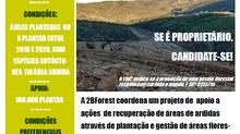 2BForest coordena um projeto de  apoio a ações  de recuperação de áreas de ardidas - Monchique