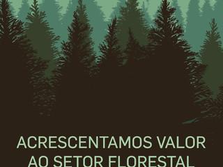 Grupo Nacional de Certificação de Matas, 2B_Forest_Group