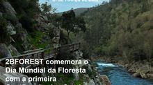 Dia da Floresta: 2BForest obtém a 1ª Certificação de Serviços de Ecossistemas em Portugal!
