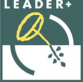 Leader Picture.jpg