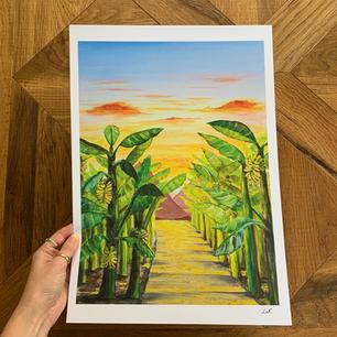 'Banana jungle'