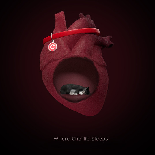 Where Charlie Sleeps.jpg