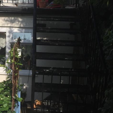 Stairs & Balustrade.