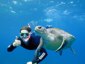 Featured Company - Byron Bay Dive Centre