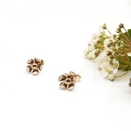 Clous FLOWERS