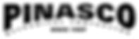Pinasco-logo.png