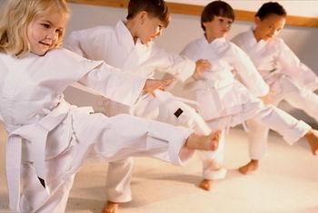 larchmont karate