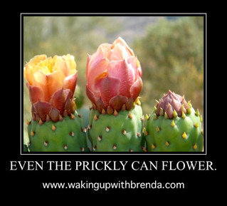 Prickly?