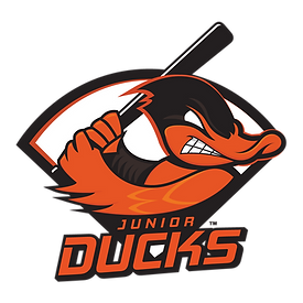 LI_JrDucks_color.png