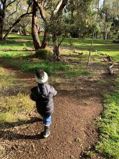 Toddler Walking in the Park.JPG