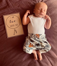 2 week old newborn baby boy.jpg